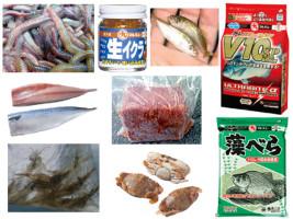 釣り餌の種類