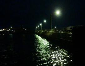 メバル釣りは夜がチャンス