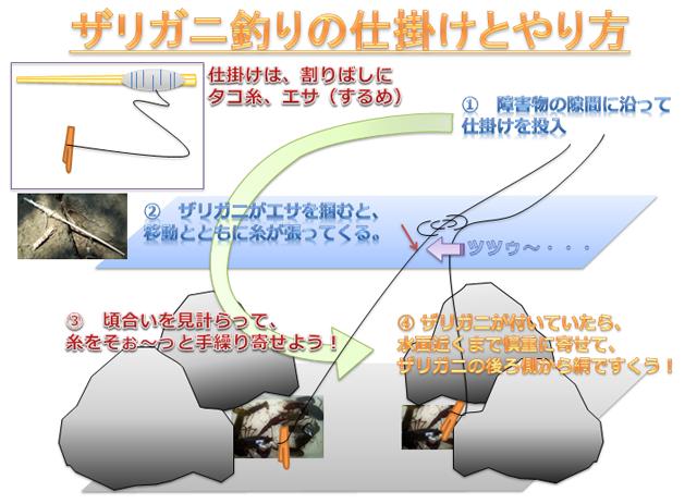 ザリガニ釣りの仕掛けとやり方(図解)