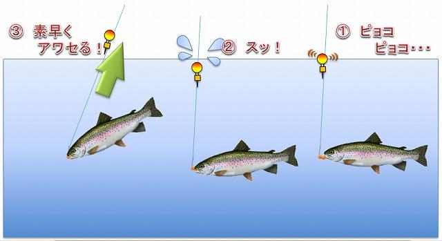 ニジマス釣りのアワセ方