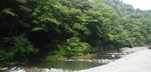 フライフィッシング 管理釣り場 神奈川