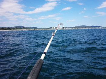 今釣れる魚に使うビシ竿