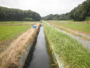 川の魚釣り 連れる場所 水路とその合流点
